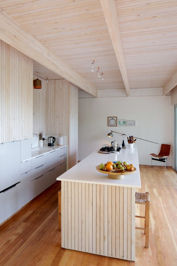 LG House by Antonio Lipthay (18)