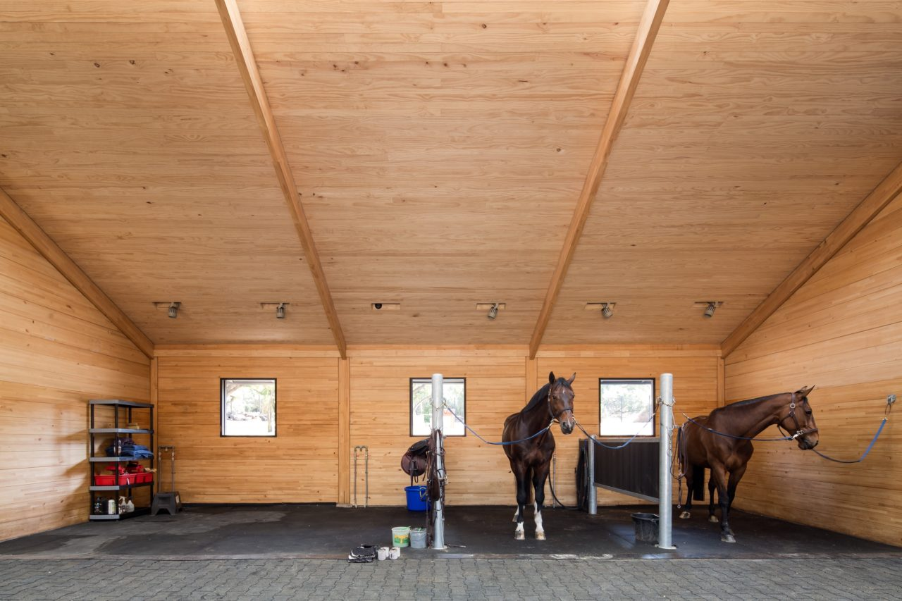MSporthorses Stable by Matias Zegers