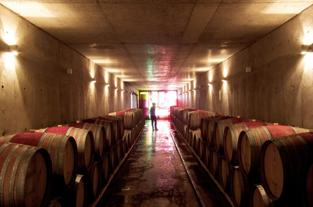 Ventolera Winery by Francisco Izquierdo