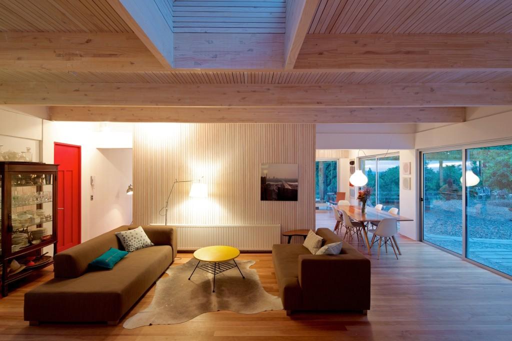 LG House by Antonio Lipthay (2)